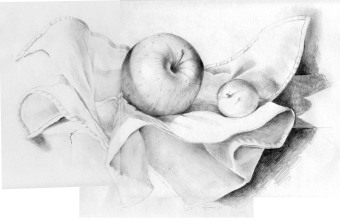 bodegon manzana y paño copia